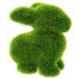 "ЭКО-игрушки из ""травы"""