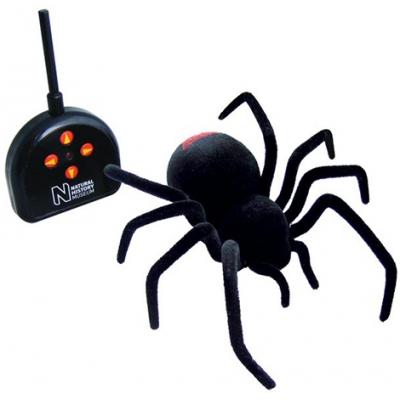EL267 Р/у паук