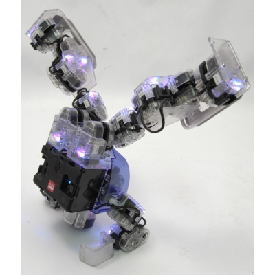 """995720T Робототехнический конструктор """"Робот-андроид Robobuilder"""""""