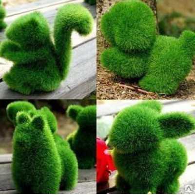 "6545 ЭКО-игрушка из травы ""Белочка"" 12х12 см"