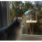 99172 Кормушка для птиц с креплением к окну Gardman