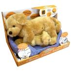 """Купить 991202R-BGD Мягкая интерактивная игрушка """"Собака со щенком"""" Teeboo"""