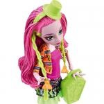 "990CFD17 Кукла Марисоль Кокси ""Школьный обмен"" Monster High Mattel"