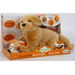 Купить 991210R-BGD Собака бежевая интерактивная Тeeboo